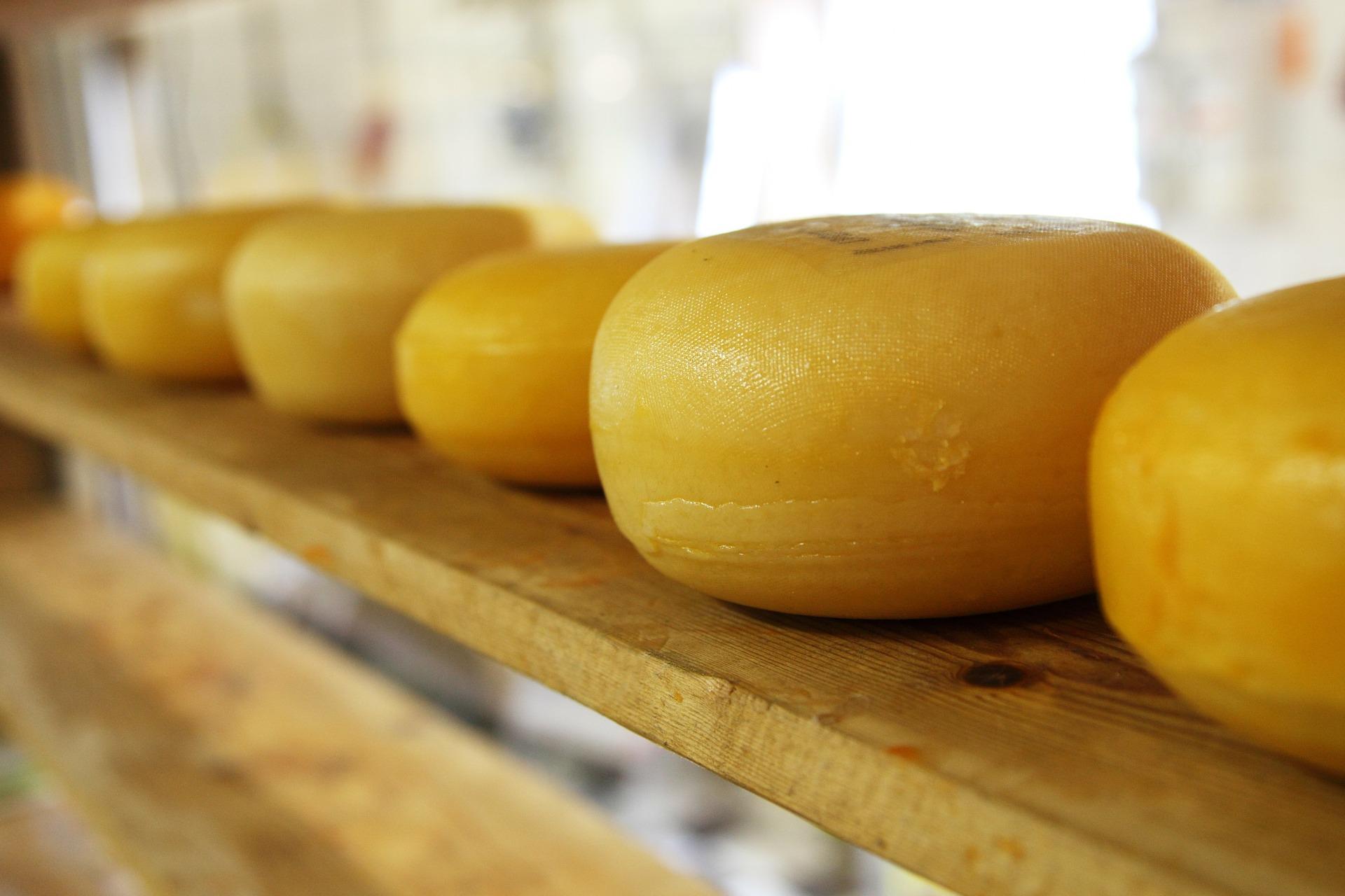 Lager mit Käselaiben